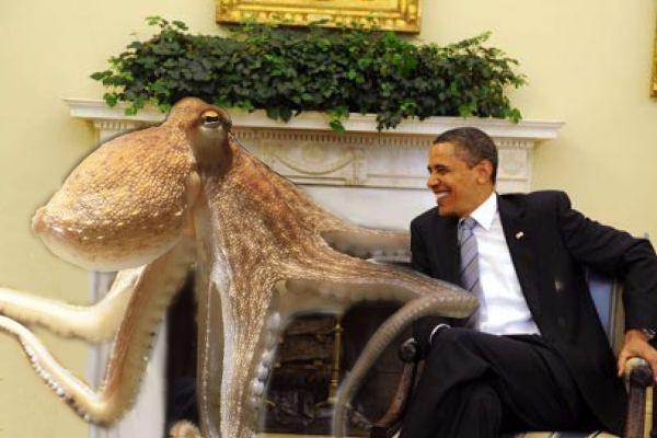 Polpo Paul con Barak Obama